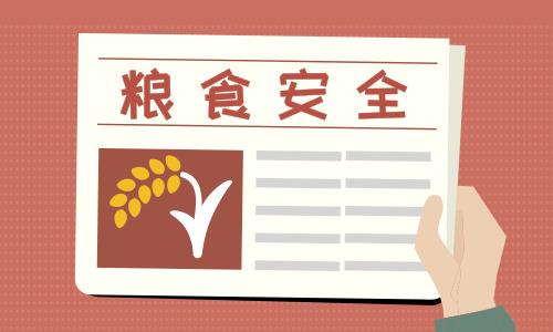 口粮绝对安全、百姓米面无忧 ——关于当前粮食市场供应问题的对话
